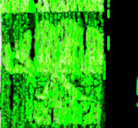 ecole-multimedia.jpg